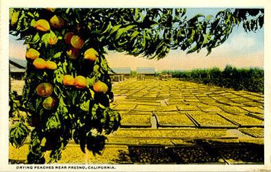 peaches_postcard_tatteredandlost
