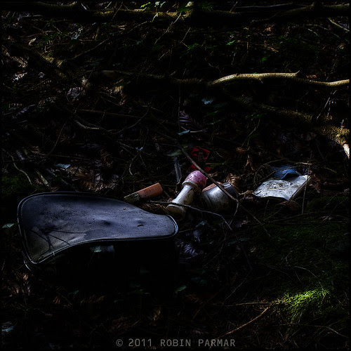 Myths of the New Forest: Detritus #28796
