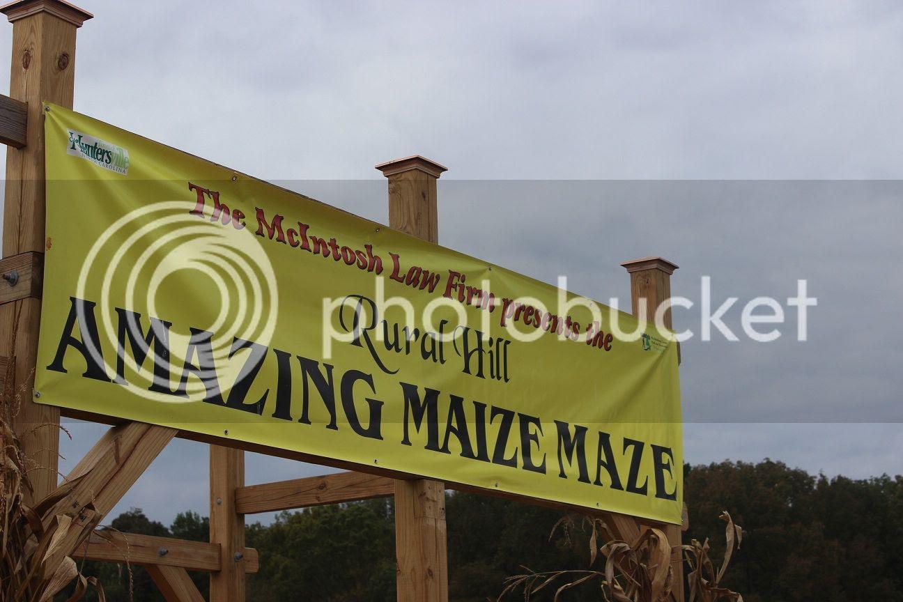 photo maze26_zps819a5c08.jpg