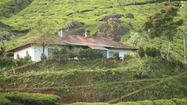 An Indian tea plantation bungalow, Kerala