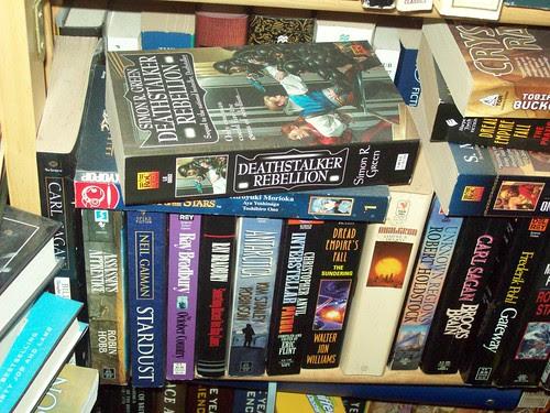Bookshelves 6