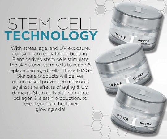 The Max Stem Cell Collection W Vectorize Technology Skinology