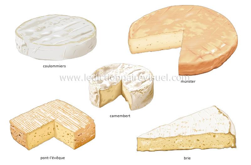 fromages à pâte molle - Le Dictionnaire Visuel