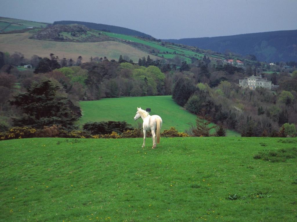 ireland landscape 10