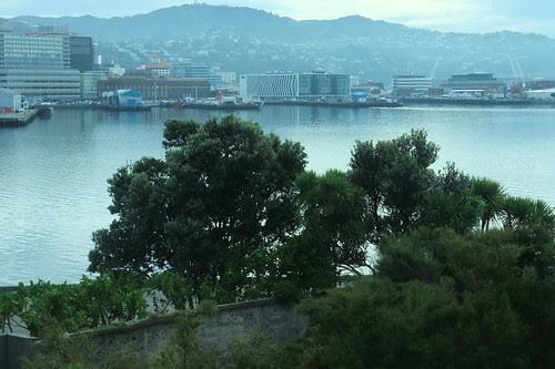 NZ 006