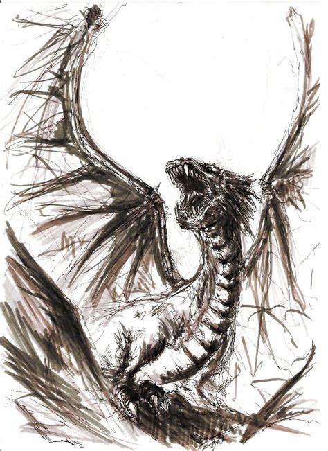 pencil dragon  dungeon dragon sketch dragon art