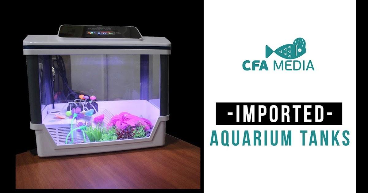 Fish Aquarium In Chennai Fish Tank