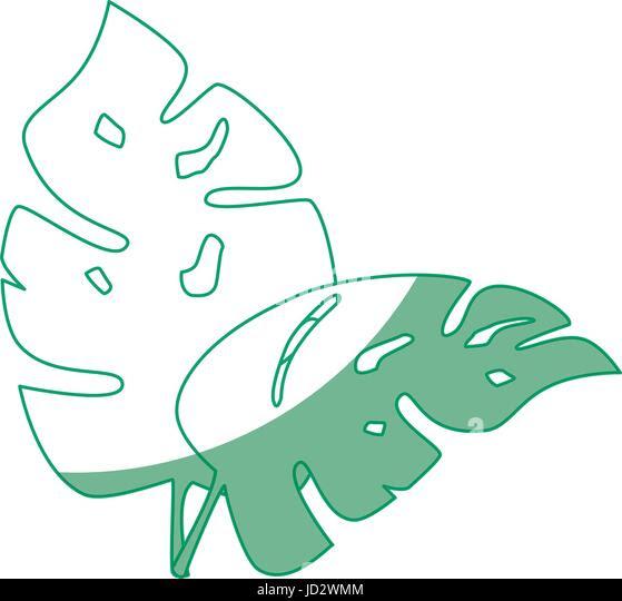 plant ecology symbol jd2wmm