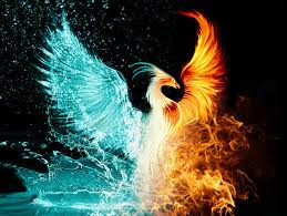 Transformation Possibilities Phoenix Rising From The Ashes Ava