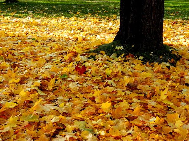 October_2013_35