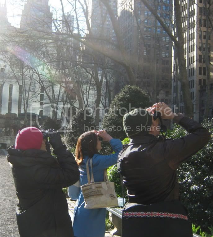 Birding Tours of Bryant Park