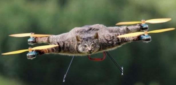Bart Jansen quis fazer uma homenagem a seu gato que morreu e o trnasformou em um drone