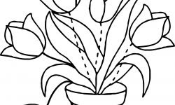 Laleler çiçek Boyama Sayfası