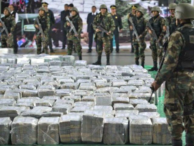 Drug cartel bust