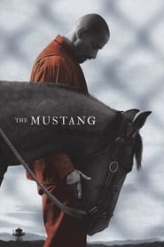 Mustang Stream Deutsch