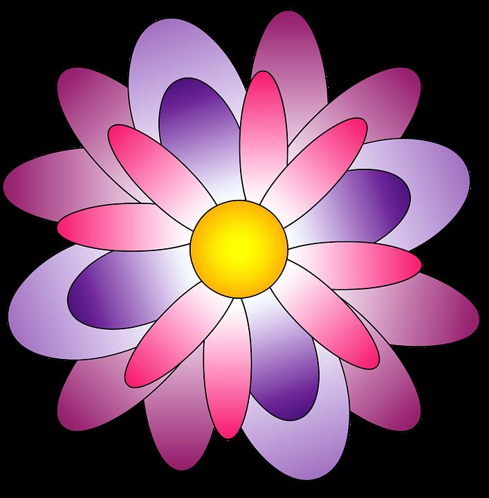 Flowers Color Png Transparent Flowers Color Png Images Pluspng