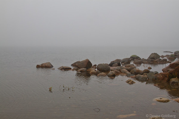 Jordan Pond on a rainy, cloudy, foggy day