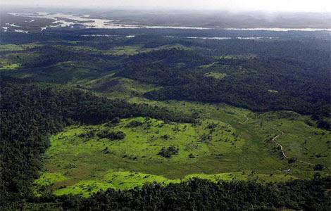 Área deforestada en el río Xingu.| Afp