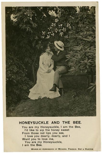 Honeysuckle and the Bee_tatteredandlost