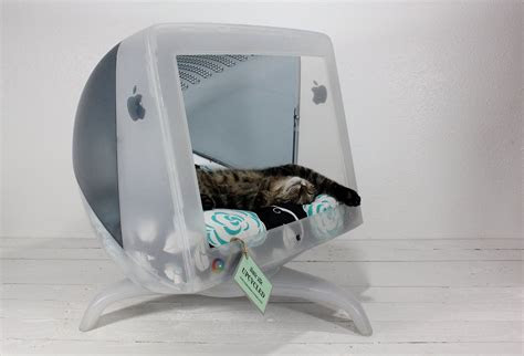 upcycled home decor ideas  reuse  dolly blog