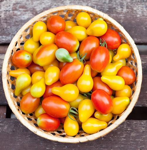 5_Tomato_Salad