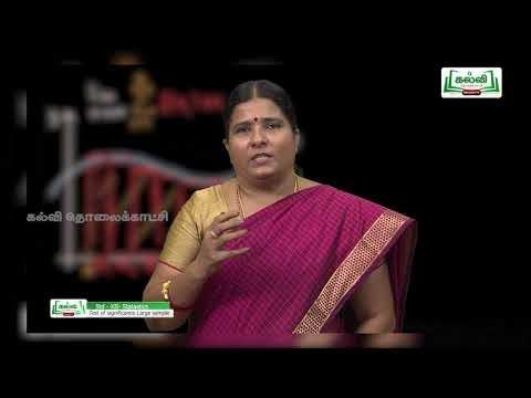 12th புள்ளியியல் அலகு 1 பகுதி 5 மிகைகாண் சோதனைகள் அடிப்படைக் கோட்பாடு Kalvi TV
