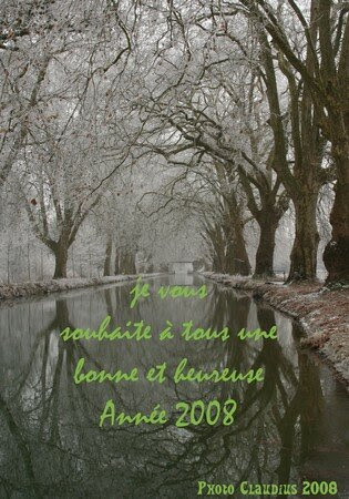 bonne_ann_e_2008