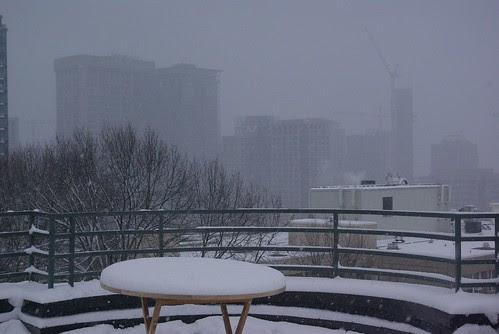 2008-12-18 Snopocalypse Seattle (21)