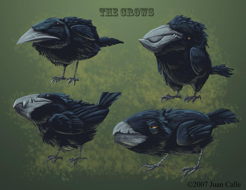 American Crow The Ebestiary
