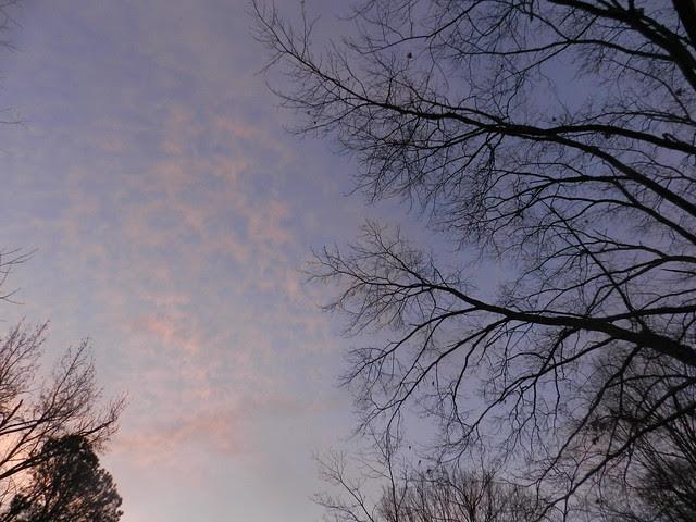 skywatchfDSCN9817