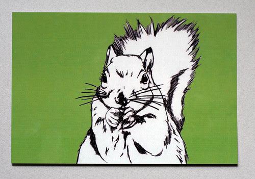 Squirrel postcard #1