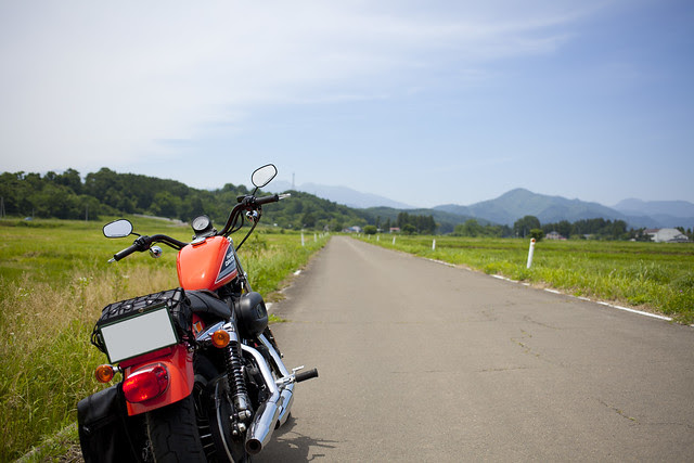 Harley Davidson XL 883R 071