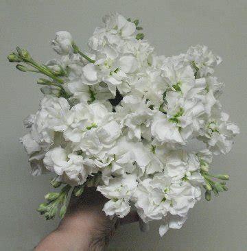 Stock Flower   Basic Bridal Bouquet Design