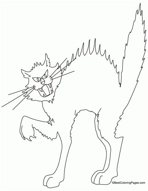 warrior cat coloring pages  print coloring home