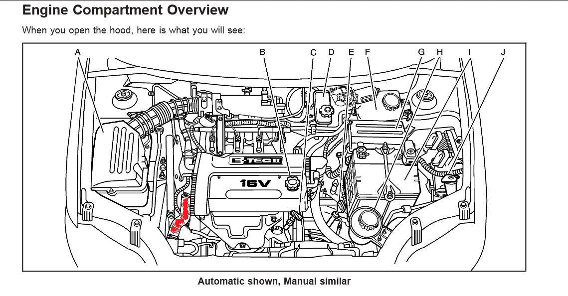 97 Chevy Malibu Engine Diagram Wiring Diagram Ball Data B Ball Data B Disnar It