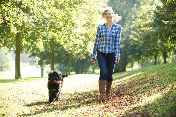 Sprehod s psom