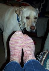 Zeus_socks