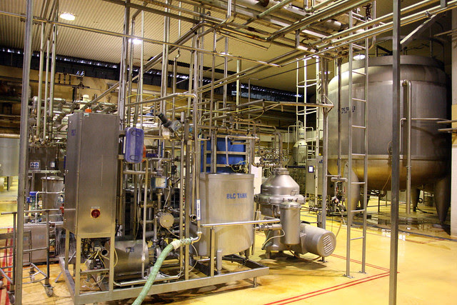 The processing plant pasteurises and homogenises the fresh milk