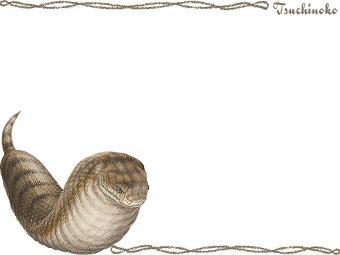 スマホ用ページツチノコバチヘビのポストカード用イラスト条件付