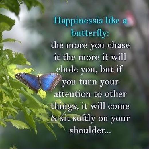 Happiness Is Like A Butterfly Pictures Photos And Images For
