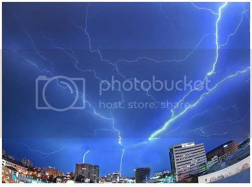 Sarasota Lightning