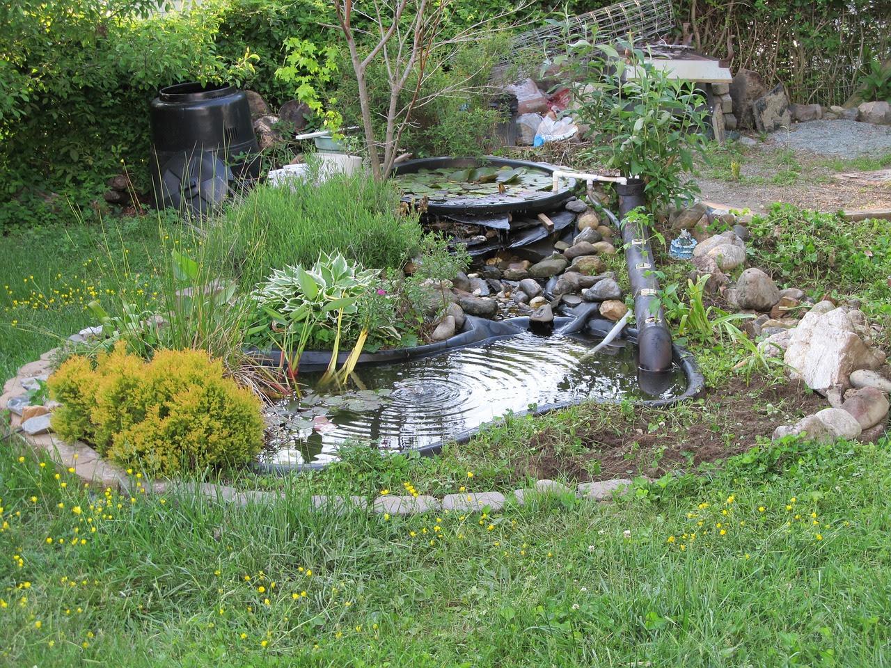 pond 722926_1280