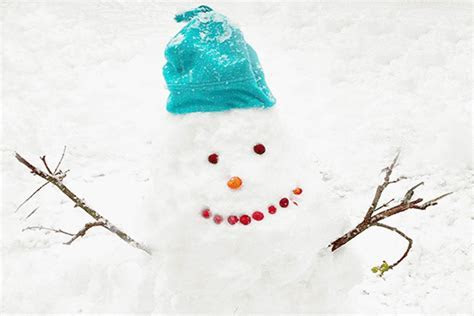 Have A Great Day Happy Winter Snowman. Free Have a Great
