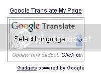 google translate.jpg