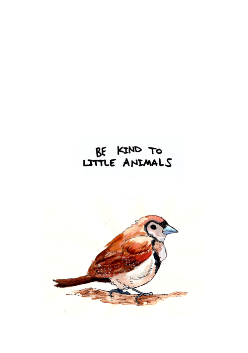 Art Animals Quotes Painting Little Lyrics Nature Bird Be Kind Little