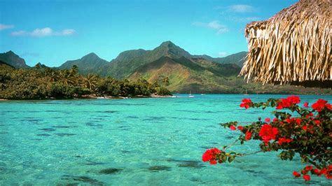 desktop background tropical beach background tropical