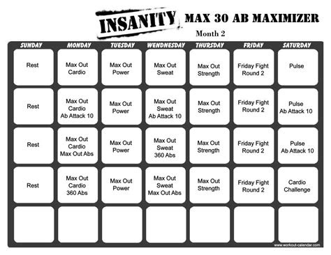 insanity max  ab maximizer month  px workout