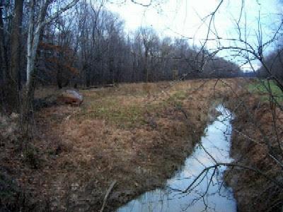 Kentucky Bigfoot Sighting Location