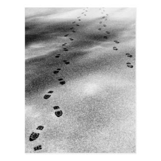 Footprints in Snow Postcards