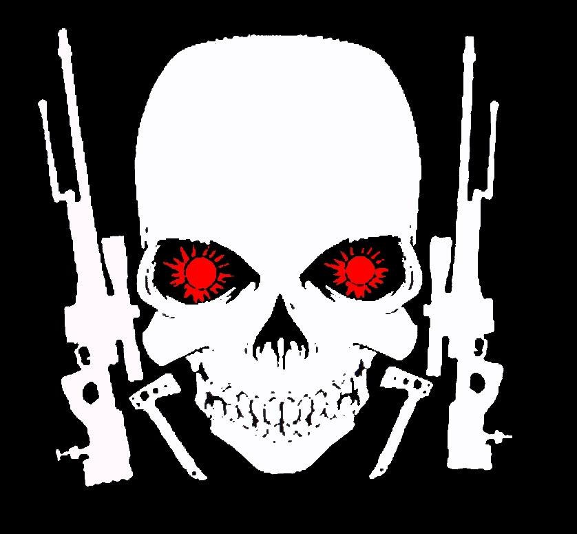 jolie blogs: black ops skull logo